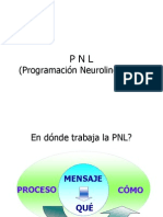 pnl2.ppt