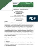 RISCOS_QUIMICOS_EM_UMA_USINA_DE_ACUCAR_E_ALCOOL