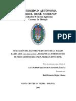 EVALUACIÓN DEL ÉXITO REPRODUCTIVO DE LA  PARABA BARBA AZUL (Ara glaucogularis), MEDIANTE LA INTRODUCCIÓN DE NIDOS ARTIFICIALES