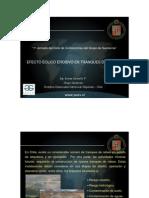 ivonne_jaramillo.pdf