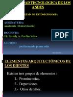 Anatomia Dental Exposicion.pptjb