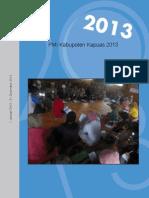 PMI Kabupaten Kapuas 2013