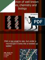 DNA Metalcomplex