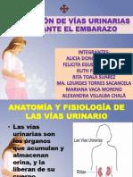 Seminario de Fund. Obstetricos 2
