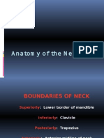 Neck Board Exam Lecture