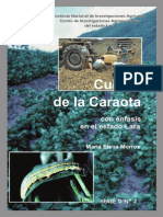 Cultivo Caraota Lara (1)