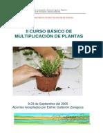 Curso multiplicacion plantas