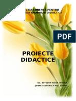 Proiect Didactic Limba Romana