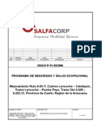 1.-Programa Ssoma 1 - Salfa Loncoche