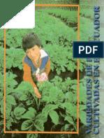 Variedades de Papa Cultivadas en El Ecuador.