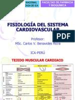 Fis. Cardiovascular 2