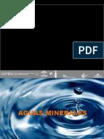 Curso Agua Mineral Presentacion Version Compatible.