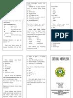 Leaflet - Gizi Ibu Menyusui.doc
