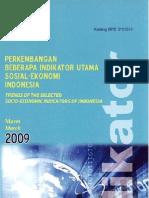 Socio Economic Indicators Indonesia