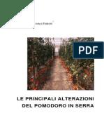 Alterazioni Pomodoro in Serra