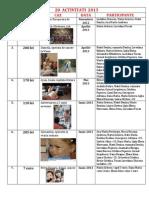 Bilant grup 2013