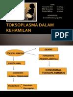 Mt Toksoplasma