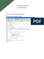 polinomio matlab