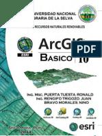 Libro de Arcgis 2010