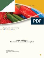 Origin and History.pdf