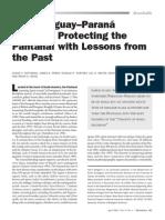 Gottgens Et Al. 2001 Hidrovia Protecting the Pantanla With Lessons Form the Past