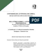 Relatório_ Atividade_Profissional.pdf