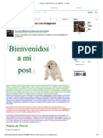 Todas las razas de perros con imágenes.pdf