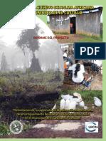 Impacto Del Cultivo de Palma Africana en El Municipio de El Castillo, Nicaragua