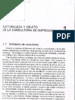 Tema 1. Naturaleza y Objeto de La Consultoria de Empresas