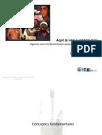 0-Conceptos Fundamentales de Morfosintaxis