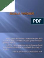 Boala Tangier