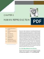 03human Reproduction