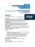 Monografía Curso de Inteligencias múltiples, Inteligencia reflexiva y de autorregulación