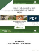 Manejo de Aves Silvestre decomisadas - J Iza.pdf