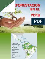 Presentacion de La Deforestacion