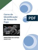 Curso de Identificação de Armas de Fogo
