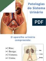 Apresentação  patologias  do sistema urinario.pptx