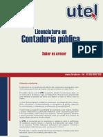 Contaduría pública.pdf