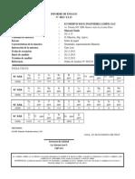 Formato ICP