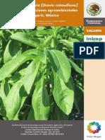 02_El cultivo de Stevia  de Nayarit, México