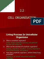 2.2 Cell Organisation