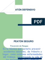 PEATÓN DEFENSIVO