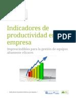 [PD] Documentos - Indicadores de Productividad en Una Empresa