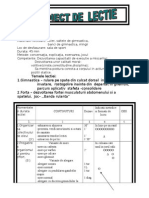 Proiect Didactic Cl.3