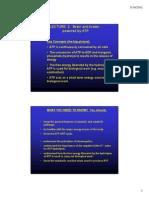 Biochemistry Lect 2 2011 Colour 2 Slides Per Page