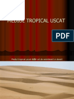 Mediul Tropical Uscat de Desert