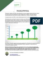 Brosura Paulownia Invest