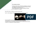 Homo sapiens arcaicos recientes en África