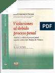 Libro Violaciones Al Debido Proceso Penal Amoreti Pachas