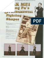 8 3 Fighting Shapes of Pak Mei